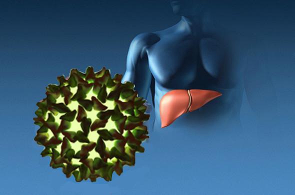 Симптомы и диагностика вирусных гепатитов