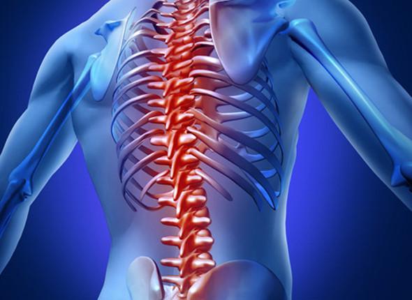 Почему кости разрушаются? Симптомы и диагностика остеопороза