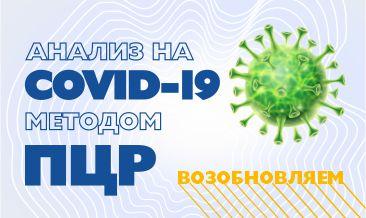 В Синэво возобновлено ПЦР-тестирование на Сovid-19.