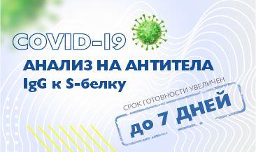 Увеличение срока готовности услуги 2789 ИФА. SARS-CoV-2, антитела IgG к S-белку